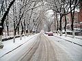 Strada Turnătorului (lângă Parcul Corvin) - panoramio.jpg