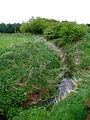 Stream Dike, Skirlington - geograph.org.uk - 424122.jpg