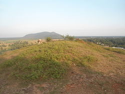 Buddhist Stupa Mound at Gudiwada Dibba