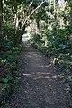 Sueyoshi Park Naha Okinawa Japan22s3.jpg