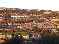 Sun-kissed Sowerby Bridge - geograph.org.uk - 271331.jpg