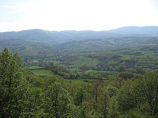Battle of Kunovica