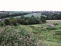 Synderford valley at Yew Tree Farm - geograph.org.uk - 478855.jpg