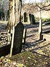 t.t begraafplaats tiel (4)