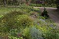 TU Delft Botanical Gardens 35.jpg