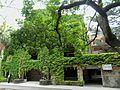 Taiwan University 台大 - panoramio.jpg