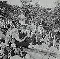 Taronga Park Zoo (26481422374).jpg