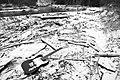 Telecaster Driftwood (246128007).jpeg