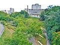 Terrassa. Jardí de Vallparadís 2.jpg