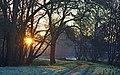 Thésée-la-Romaine (Loir-et-Cher) - Flickr - sybarite48 (5).jpg