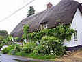 Thatched cottage on the road to Ram Alley, Easton Royal - geograph.org.uk - 446429.jpg