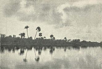 Adyar, Chennai - The Adyar River, c. 1905