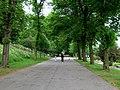 The Arboretum, Lincoln - geograph.org.uk - 821802.jpg