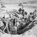 The British Army in Tunisia 1943 NA1541.jpg
