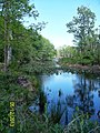 The Lawrence Brook, Monmouth Junction, New Jersey USA May 2013 - panoramio (3).jpg
