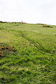 The Path Up Bindon Hill - geograph.org.uk - 1355724.jpg