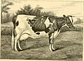 The breeds of live stock, and the principles of heredity (1887) (14594728019).jpg
