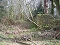 The corner of Ram Wood - geograph.org.uk - 736110.jpg
