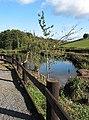 The pond at Harts Barn Craft Centre - geograph.org.uk - 598635.jpg