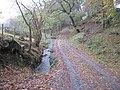 The track to Cwm yr hun - geograph.org.uk - 1575439.jpg
