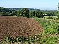 Tilled field, Spye Park - geograph.org.uk - 1343295.jpg
