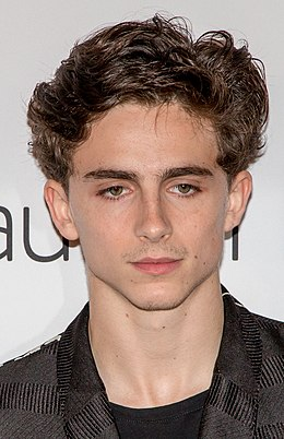 Timothée Chalamet in 2018 (cropped).jpg