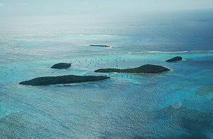 English: Aerial view of Tobago Cays, a Saint V...