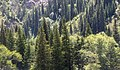 Toktogul, Kyrgyzstan (30587235558).jpg