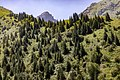 Toktogul, Kyrgyzstan (42647733170).jpg