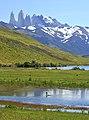 Torres del Paine, Laguna Azul 16.jpg