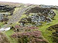 Track above Blaenmelyn - geograph.org.uk - 678895.jpg