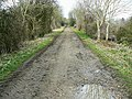 Trackbed of the Midland and South Western Railway, near Baunton - geograph.org.uk - 1201856.jpg