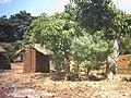 Traditional pit latrine (5372144553).jpg