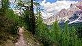 Trail in Cortina 3.jpg