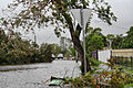 Tree damage and a flooded street in South Townsville.jpg