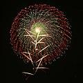 Tsuchiura Fireworks Competition 2009 b.jpg