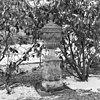 tuinvaas - loenen aan de vecht - 20141367 - rce