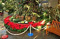 U.S. Botanic Garden at the Holidays (23623614289).jpg