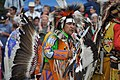 UIATF Pow Wow 2009 - Saturday Grand Entry 11.jpg