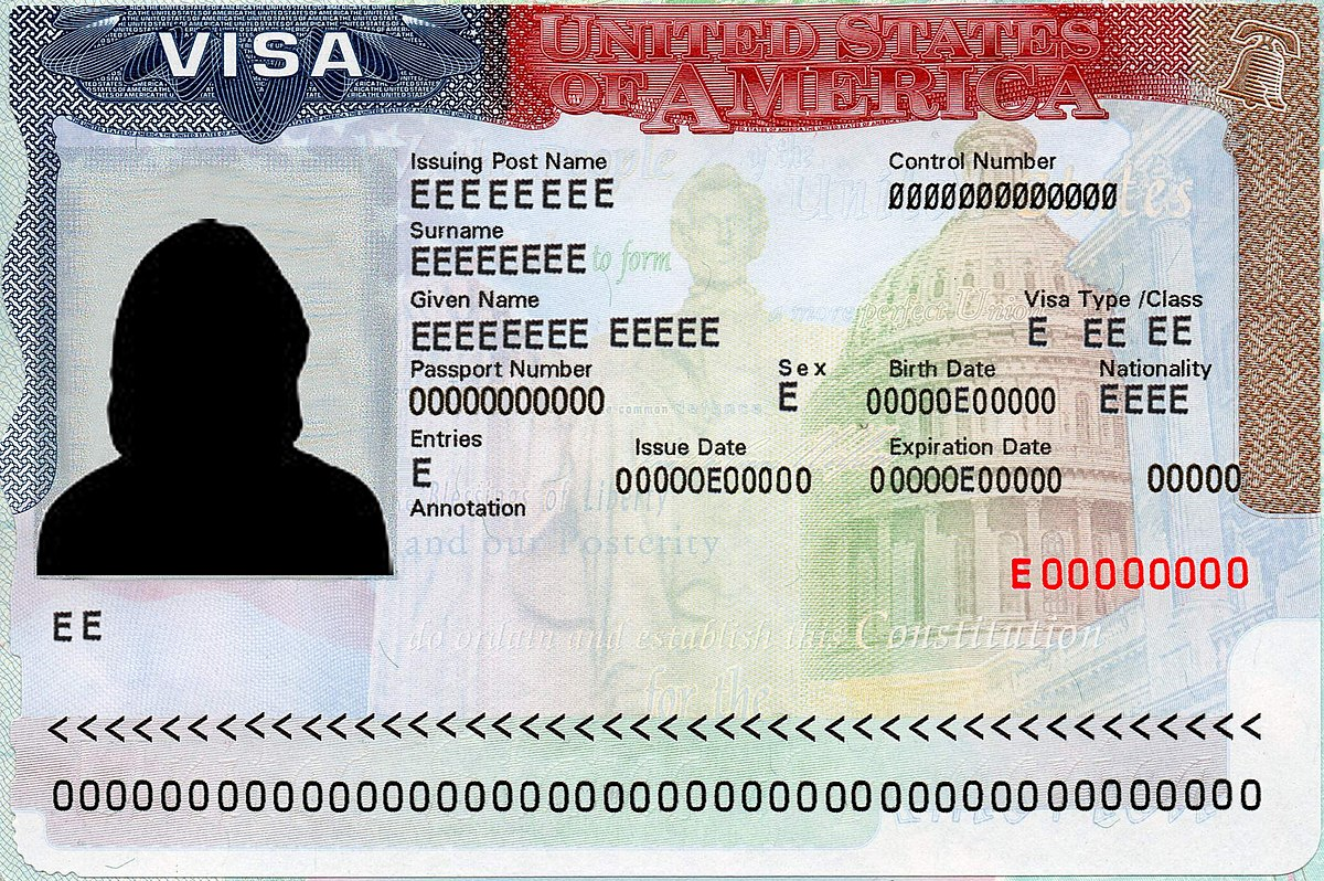 Image result for US visa