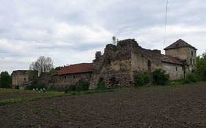 Zoloty Potik castle - Castle, overcast weather