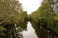 Umia River by Caldas de Reis, Galicia, Spain.jpg