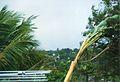 Un jour de tempête (3050305734).jpg