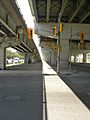 Under the Gardiner Expressway in 2011 -a.jpg