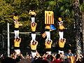 V catalana P1250624.jpg