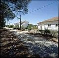 Vale da Judia, Herdade de Pegões, Montijo, Portugal (3506752931).jpg