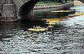 Vattenfestivalen19940814Ankracet1.jpg