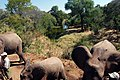 Victoria Falls 2012 05 24 1659 (7421904140).jpg