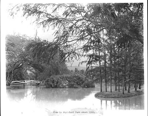 View in Kapiolani Park about 1900
