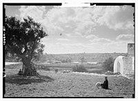 View of Jerusalem LOC matpc.14751.jpg